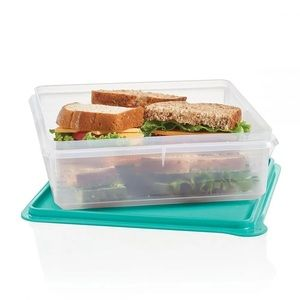 Tupperware snack-stor container